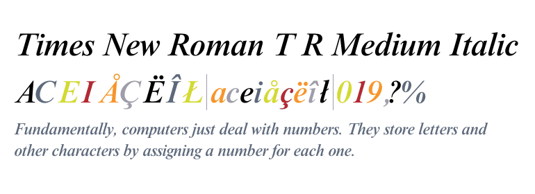 Times New Roman® Medium Italic - Fonts com
