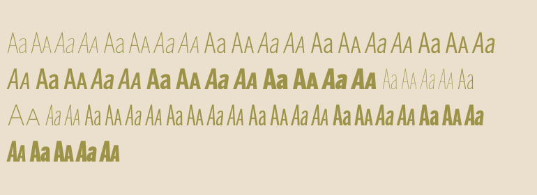 Benton Sans Compressed Complete Pack